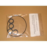 Sprayer Spare Parts, Rambler Spare Parts - Viton Pump Repair Kit